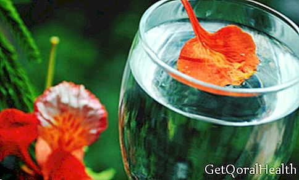 10 sebab minum klorofil