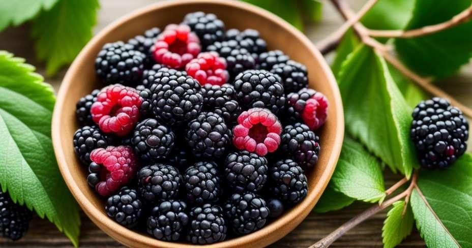 Rajeunit avec des antioxydants