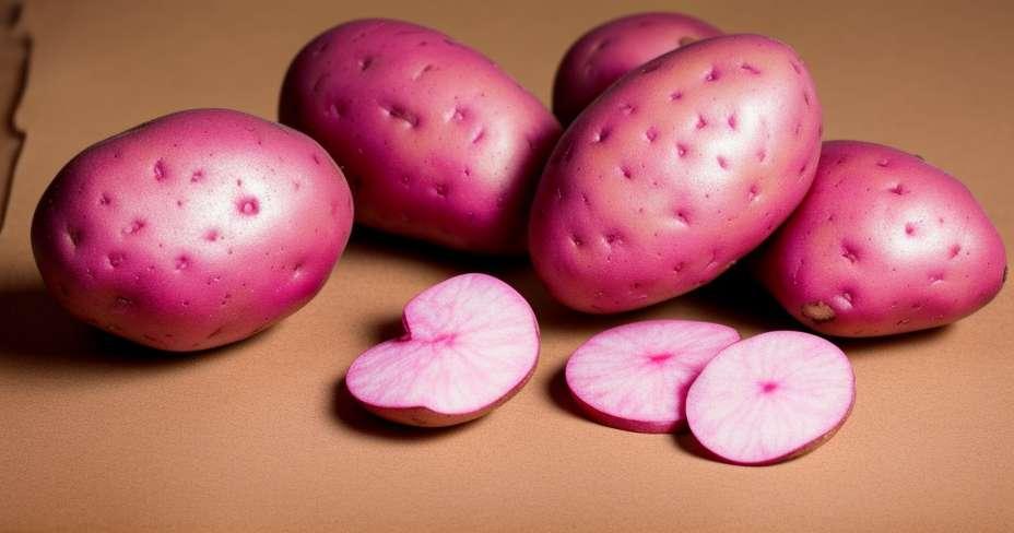 Les pommes de terre violettes réduisent la pression artérielle