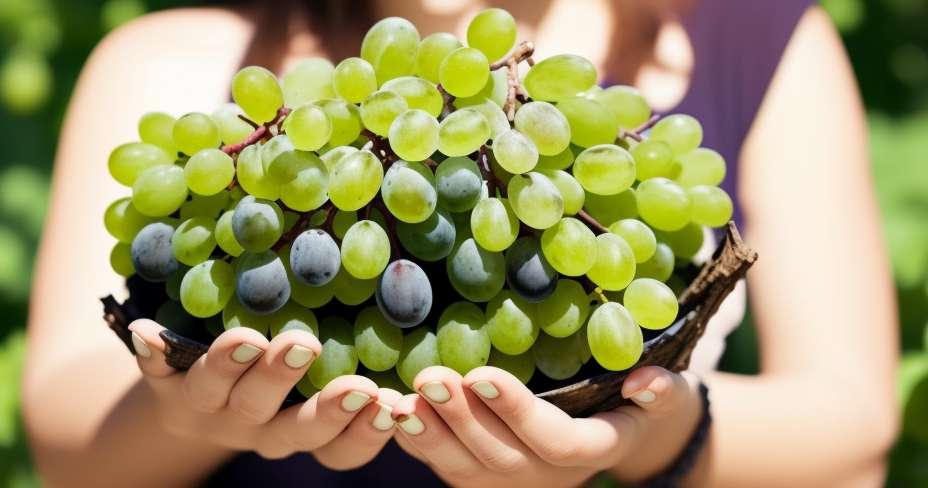 7 namirnica koje će se pobrinuti za vaše arterije