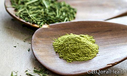 What is moringa for?