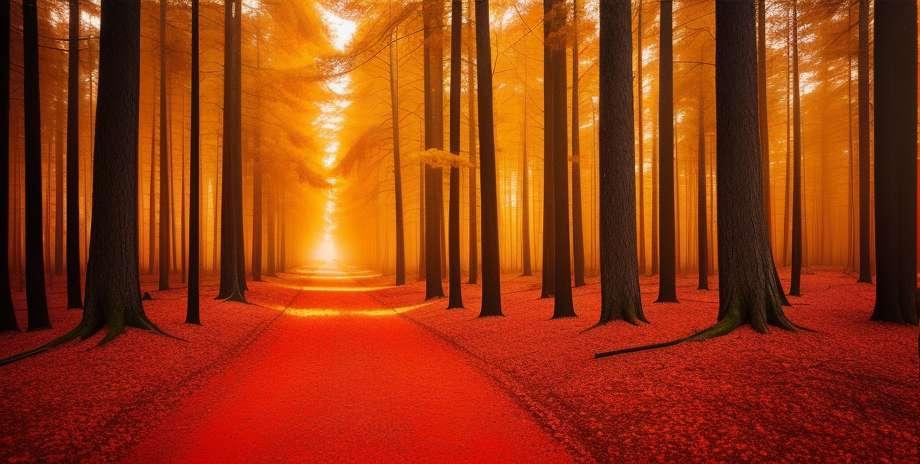 Poveikis dėl miškų gaisrų