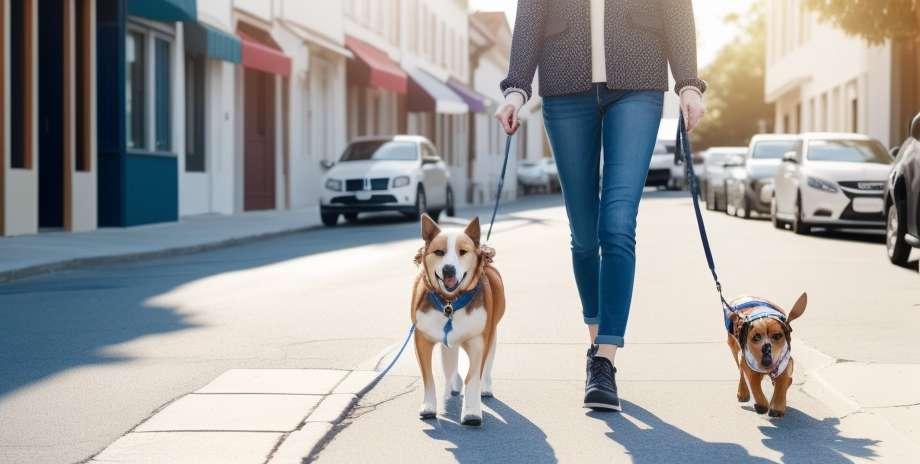 Chůze slouží pro tělo i mysl