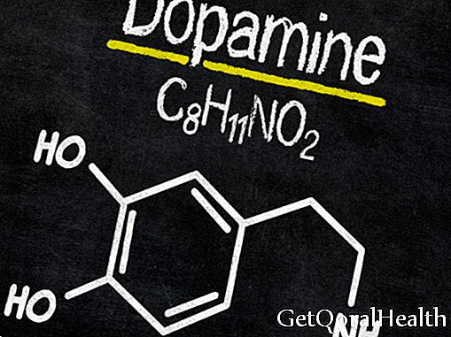 Among the most known functions of dopamine are: