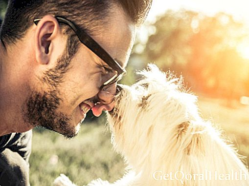Letting your pet kiss you can cause you to death, did you know?