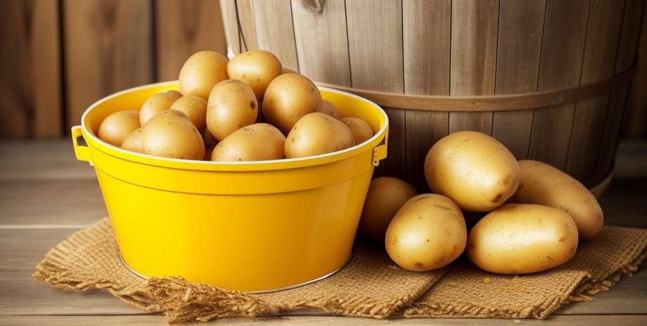 Fordeler og risiko for kosthold basert på poteter