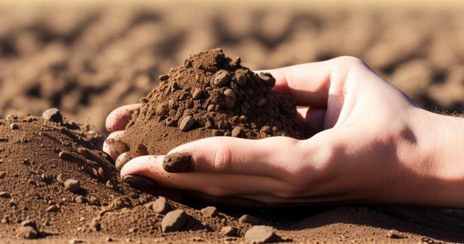 汚染土壌、健康被害