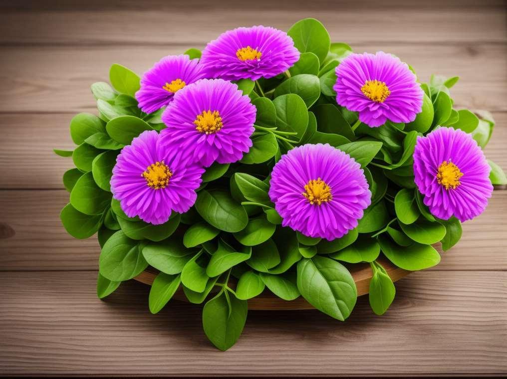 Zdravilne rastline, več kot tradicija