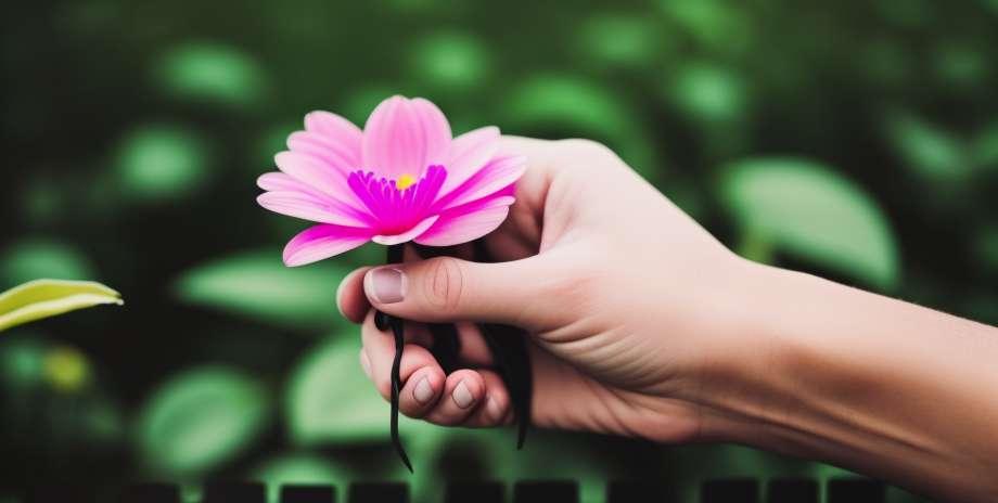 5 utilisations médicales de la marijuana