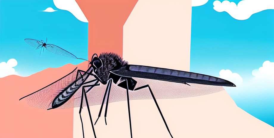 Tugevdage võitlust denguee vastu Quintana Roos