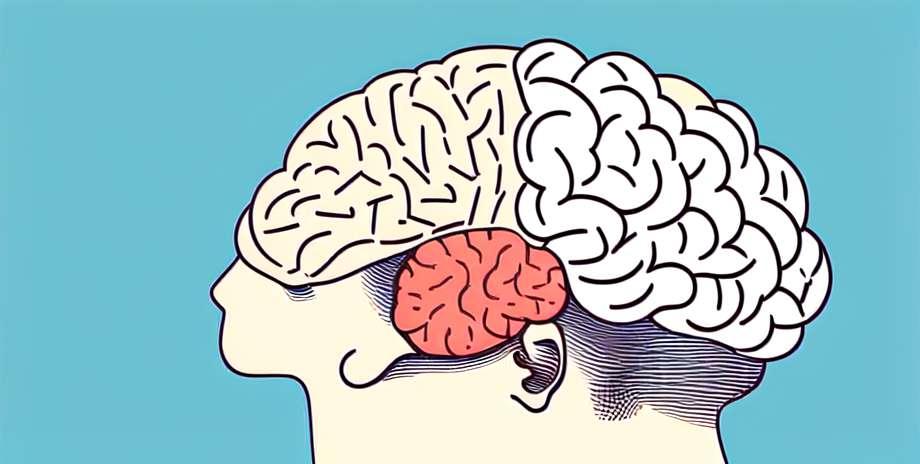 Kaip klasifikuojama išsėtinė sklerozė
