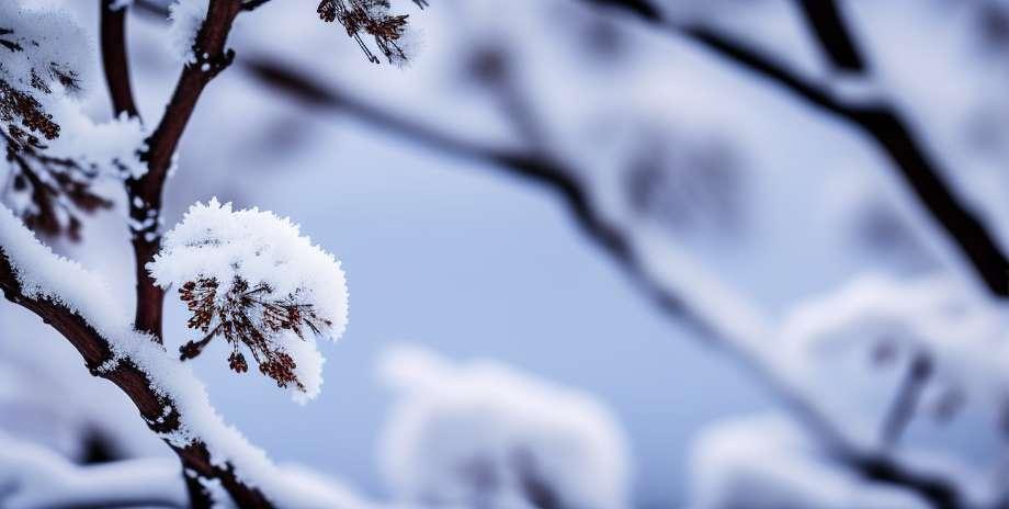 Повратити оштећење због мултипле склерозе
