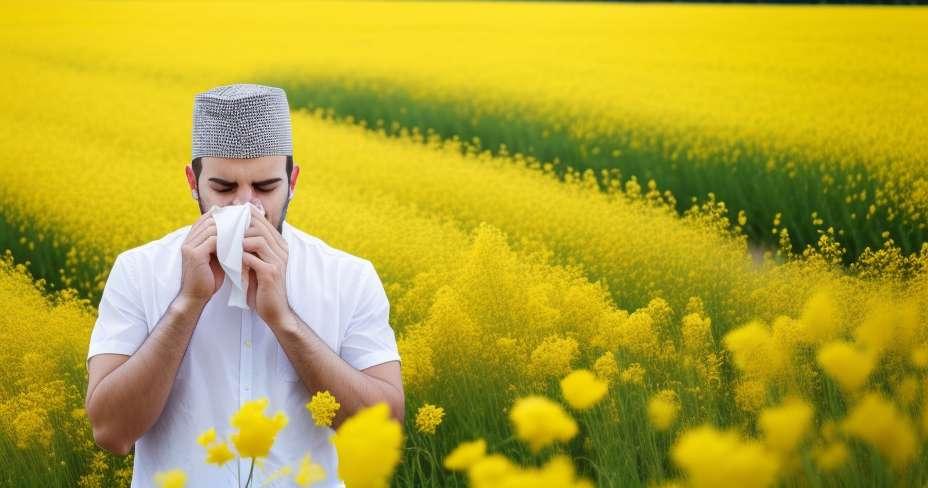 5 kota dengan prevalensi alergi tertinggi
