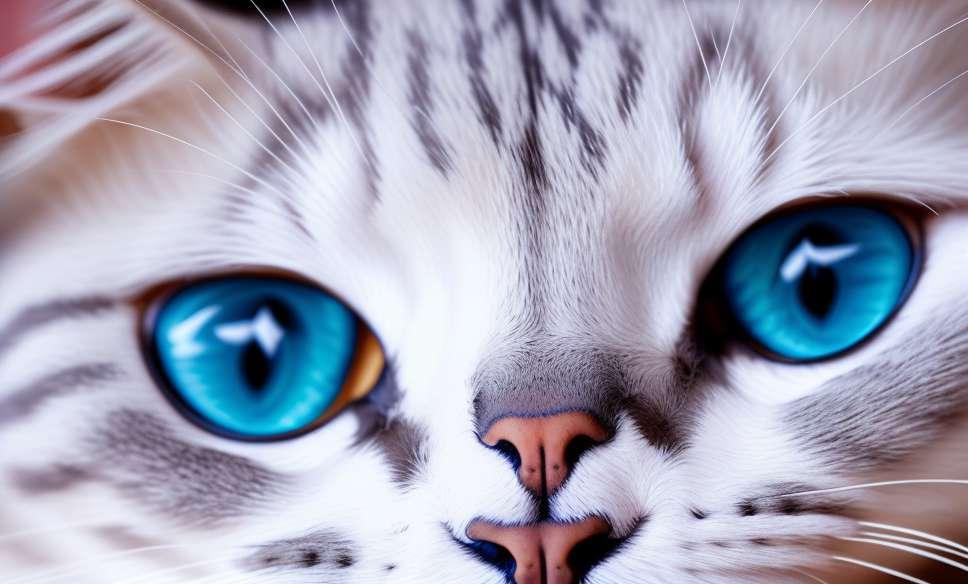 Шта се мачке боје?