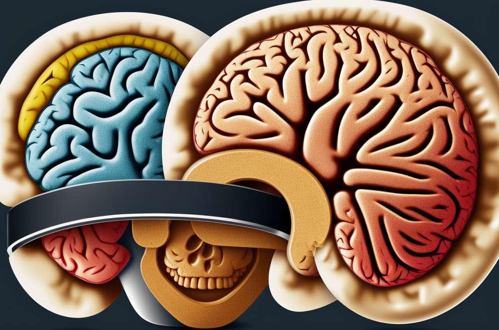 Levertransplantation forbedrer mental funktion