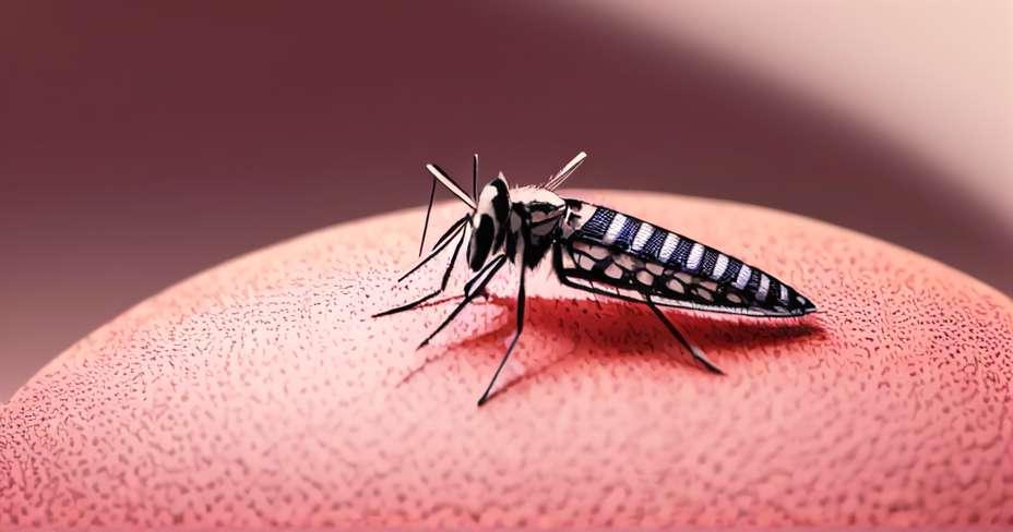 5 žuželk, nevarnih za ljudi