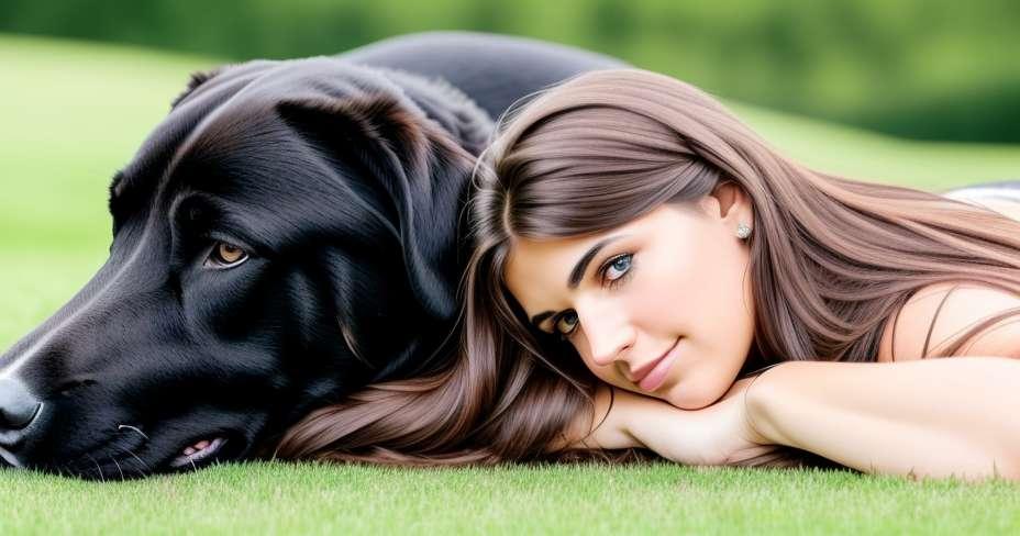 Saznajte kako educirati svog psa