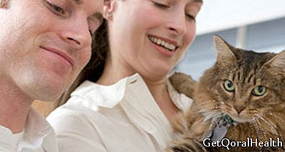 Découvrez si vous avez des allergies aux chats