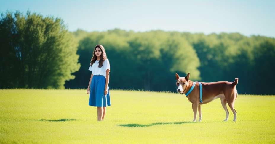 Koiran tunniste