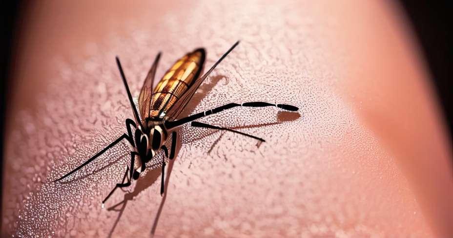 Маларија се смањује у Мексику