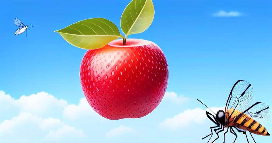 Denga se smanjuje u Meksiku