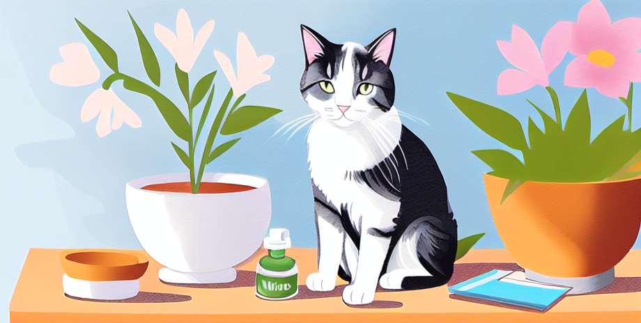 Risiko utama homeopati