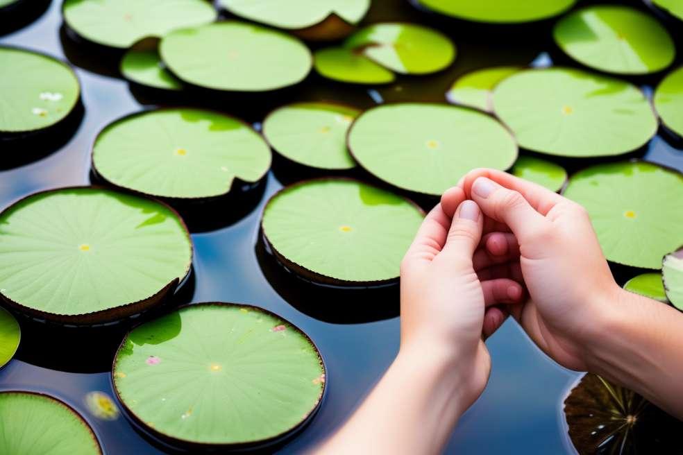 Zoneterapi, sundhed fra fødderne