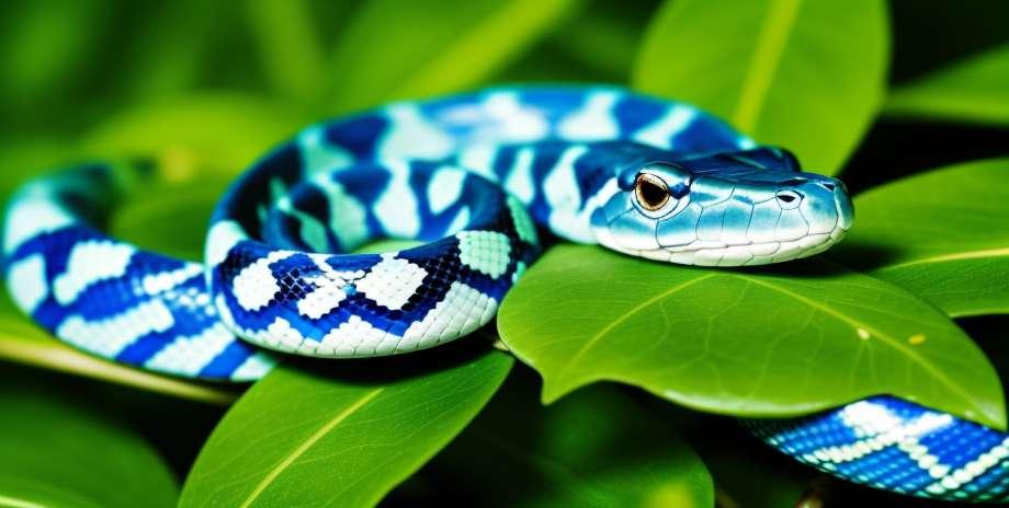 ヘビにかまれた場合の対処方法