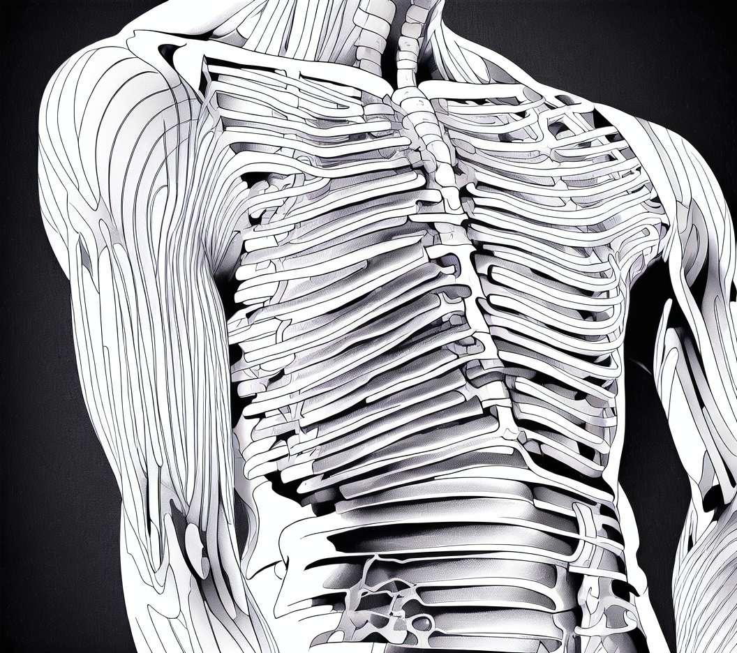 Protézy kyčelního kloubu a kolena v systému ISSSTE