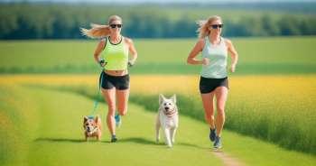 5 cách tập thể dục với chú chó của bạn