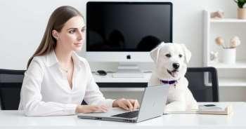 Кућни љубимци смањују стрес на послу