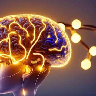 Нахраните свој мозак сваки дан!