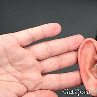 Ustvarjajo prvo umetno 3D uho