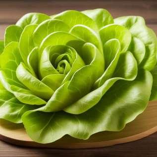 Pourquoi devriez-vous mettre des feuilles de chou sur le corps? La raison va vous surprendre ...