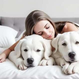 Pagerinkite miego kokybę miegodami su savo augintiniu