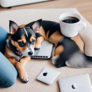 Nesting, este doar noul stil care îți propune să faci altceva decât să te relaxezi acasă.
