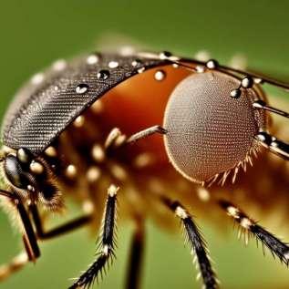 Alergie způsobená kouřením komáří