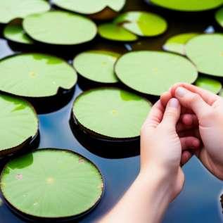 Reflexologie, zdraví od nohou