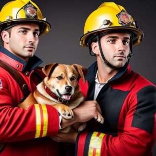 كلاب الإنقاذ ، فرصة للعيش